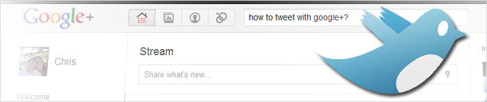 How To Tweet With Google Plus